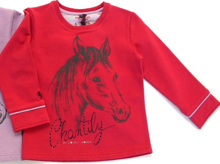 Sweat Shirt Pferde , AUSVERKAUF
